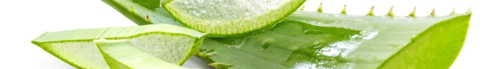 Aloe Vera Drinking Gel header image